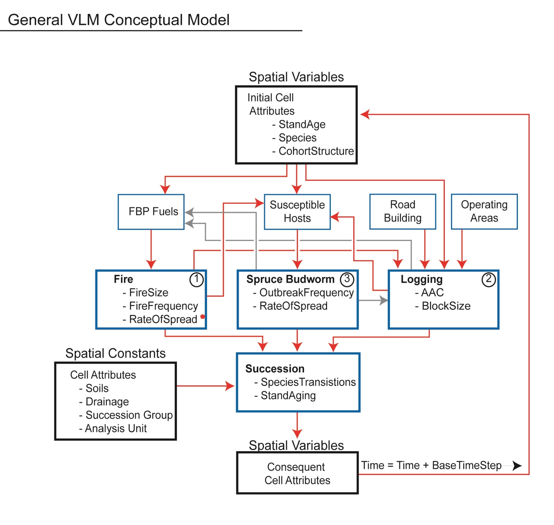 small resolution of forest ecosystem modelling