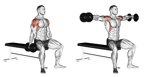 3 Specific Exercises For Building Massive Shoulders