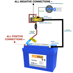 Rv Battery Bank Wiring Diagram Viair Lithium Batteries Benefits Of 150ah Lifeblue With Monitor