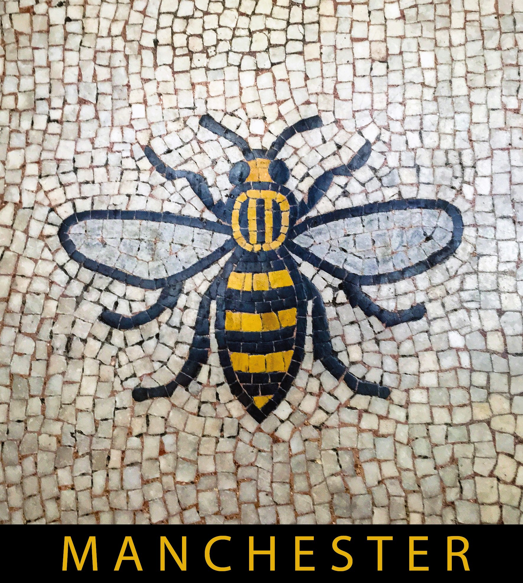 Lion Antelope And Manchester Bee Adrian Mcgarry