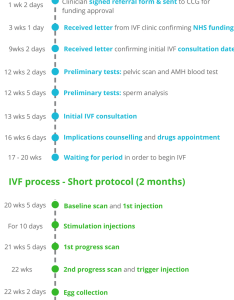 Ivf timeline how long does on the nhs take also two week wait and test day preggers kitchen series rh thepreggerskitchen