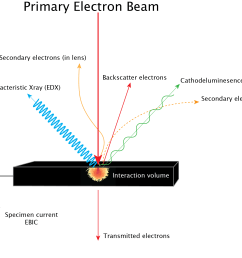 primary e beam interactions se cl xray bse ebic [ 1000 x 902 Pixel ]