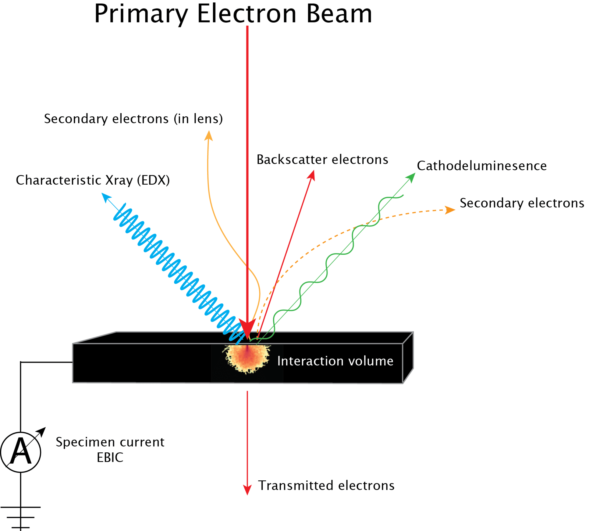hight resolution of primary e beam interactions se cl xray bse ebic