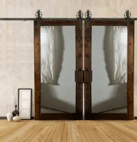 Mirrored Barn Door  Laelee Designs