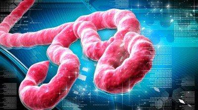 natural-news-ebola