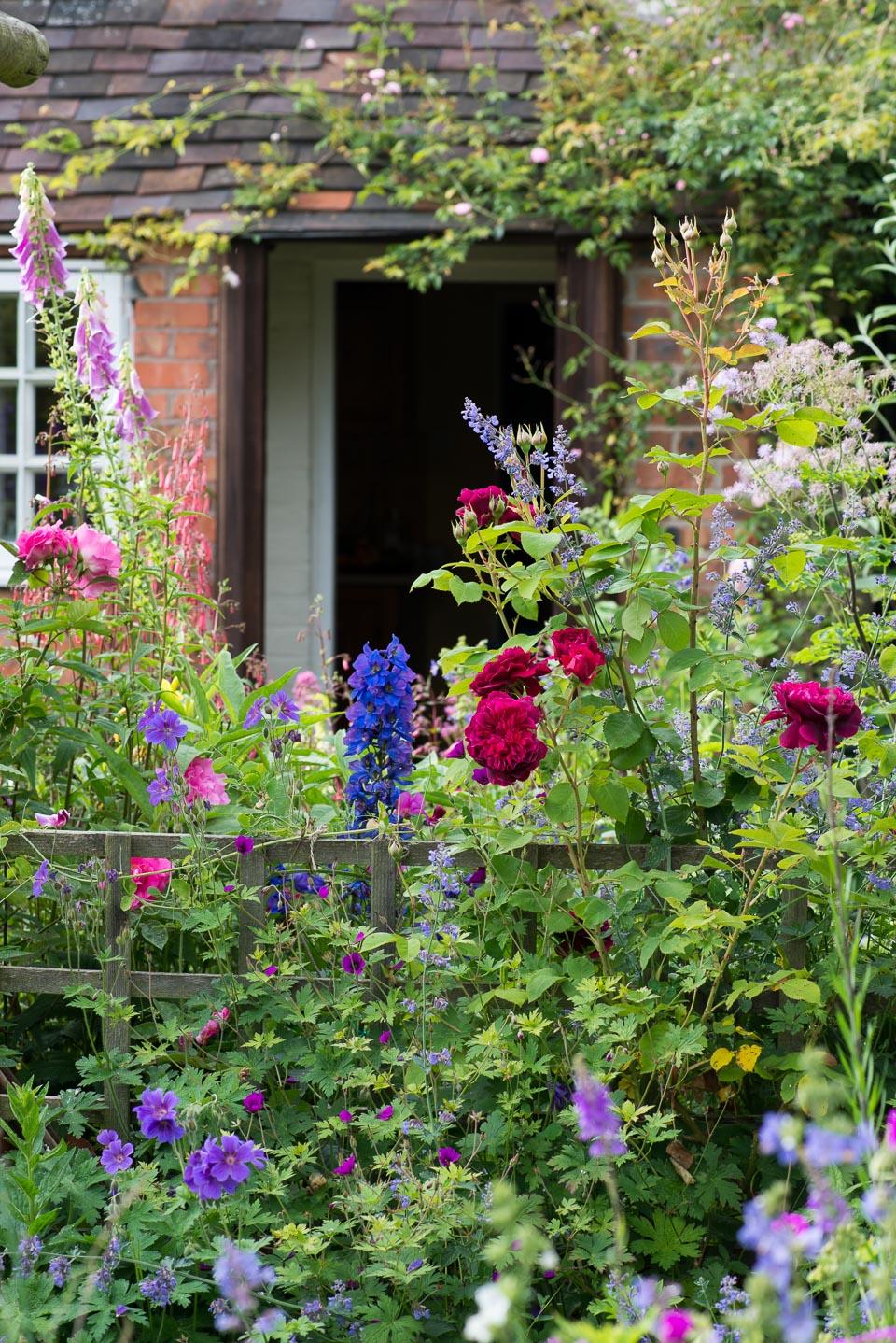 An English cottage garden  Landscape magazine