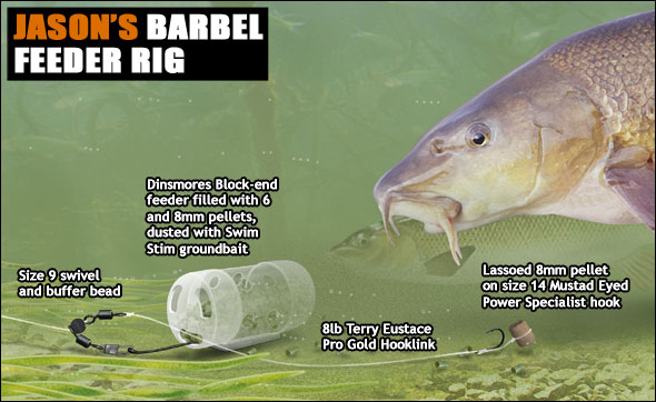 Hair Rig Diagram Barbel Fishing With Pellets Angling Times