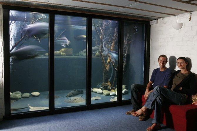 The tank that Jack built  Practical Fishkeeping Magazine
