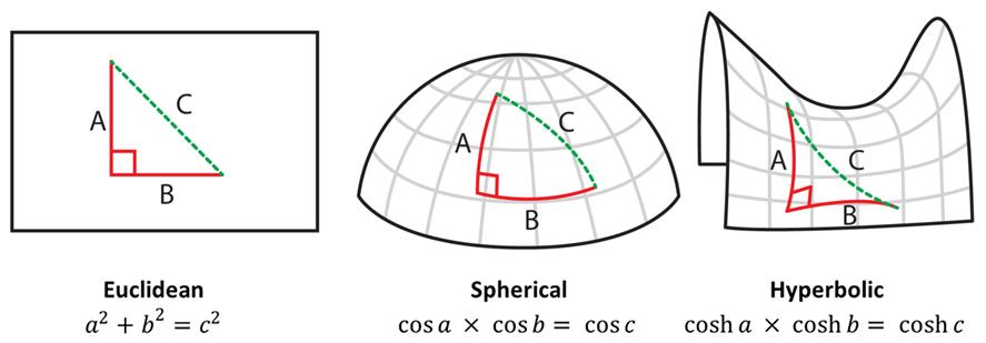 Non-Euclidean — Dr Mark Liu