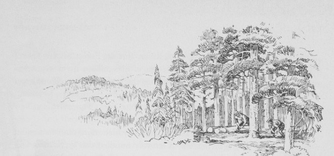 Civilian Conservation Corps in Montana: 1933-1942 — The
