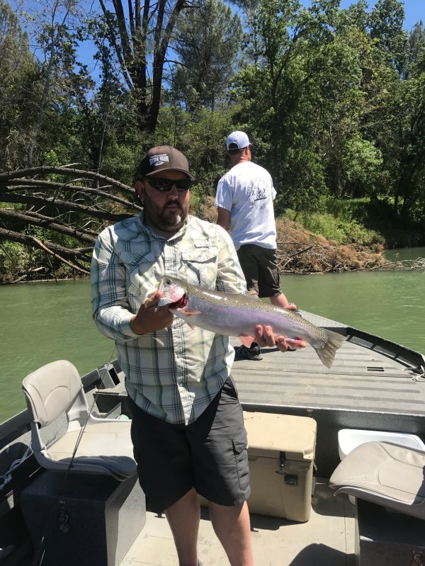 Sacramento River Fishing Report For Sacramento River