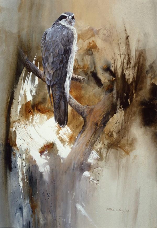 Morten Solberg Watercolor