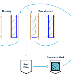 the new design will separate the brood stock and nursery from the main aquaponics system the design incorporates another bio media bed which is an  [ 1000 x 802 Pixel ]