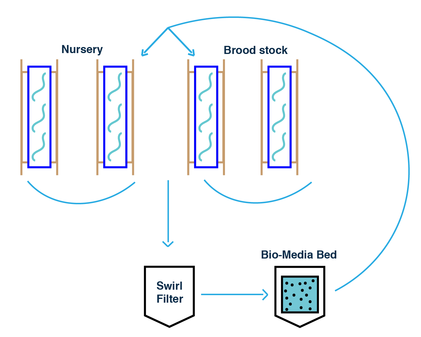 hight resolution of the new design will separate the brood stock and nursery from the main aquaponics system the design incorporates another bio media bed which is an