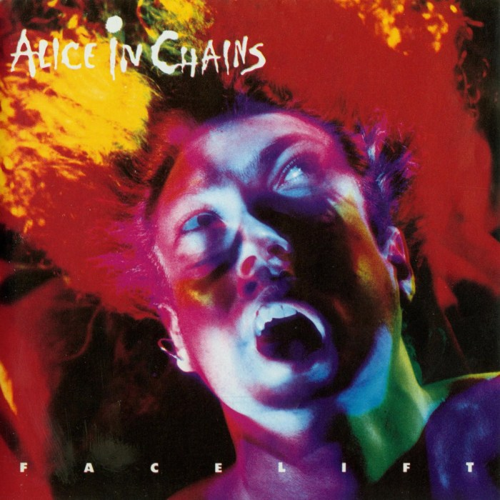 Image result for Alice in Chains – Facelift