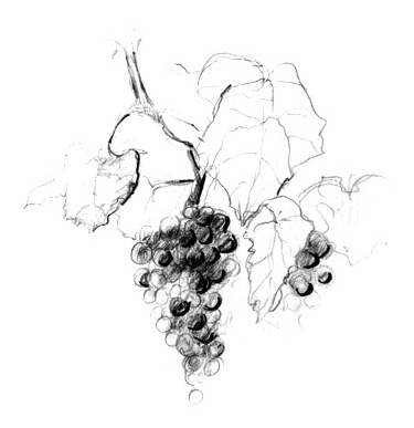 Winemaking — Chateau Boswell