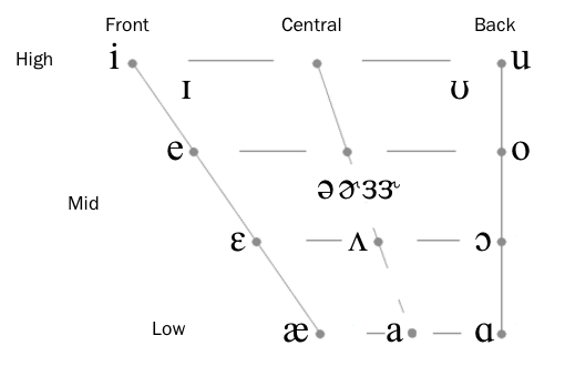 Articulatory Phonetics 101: Vowel Basics — Language Rush