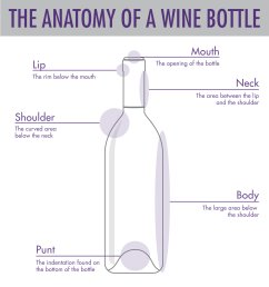 tips tricks to serving wine wtso from the vine glass bottle diagram [ 1000 x 1079 Pixel ]