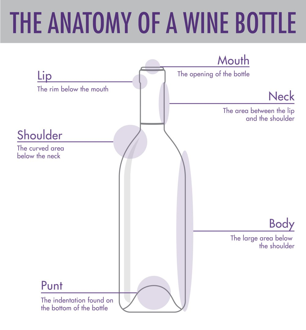 medium resolution of tips tricks to serving wine wtso from the vine glass bottle diagram