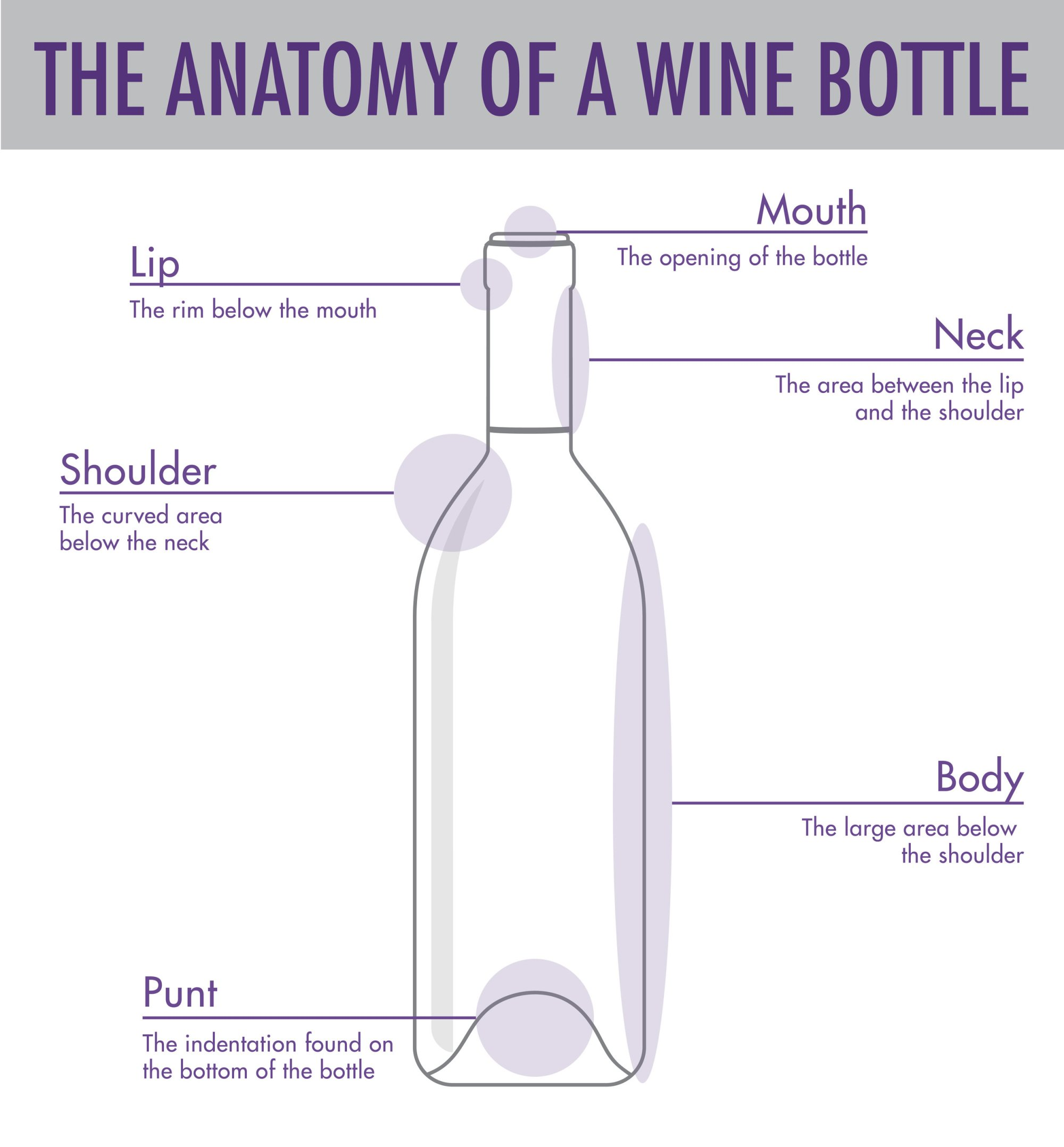 hight resolution of tips tricks to serving wine wtso from the vine glass bottle diagram