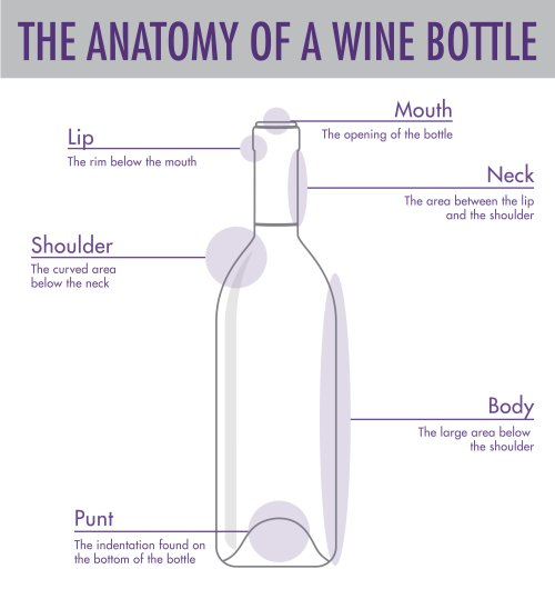 small resolution of tips tricks to serving wine wtso from the vine glass bottle diagram