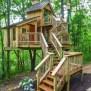 Treehouse Masters Season 9 Episode 6 Bird Barn Treehouse