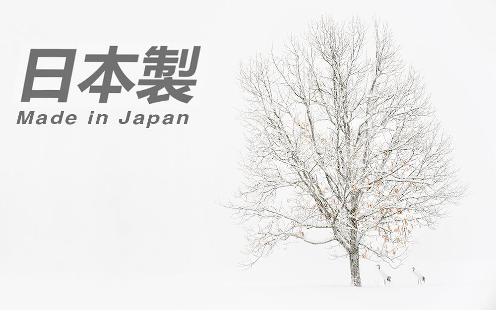 Japan Tour Report 2015 — Robert OToole Photography