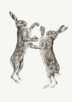 Image result for march hares