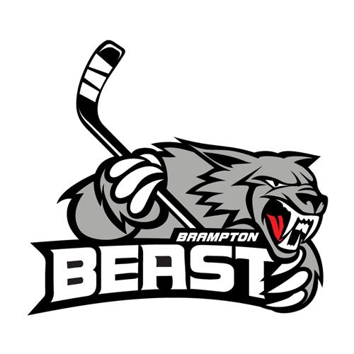 Jacksonville Icemen at brampton beast
