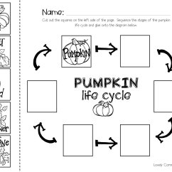 Parts Of A Pumpkin Diagram Pioneer Fh X730 Bt Sequencing With The Book Quotpumpkin