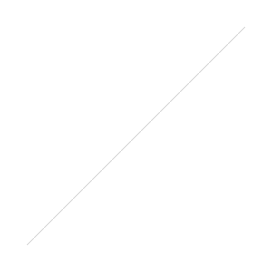 forest cat fuzzy paws