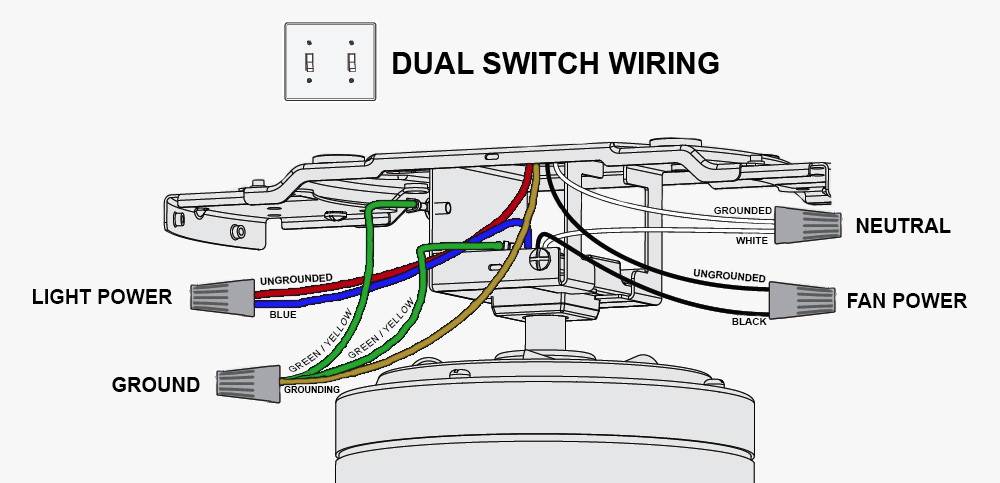 ceiling fan wiring diagram double switch kidney location in humans dual all data schematic guitar