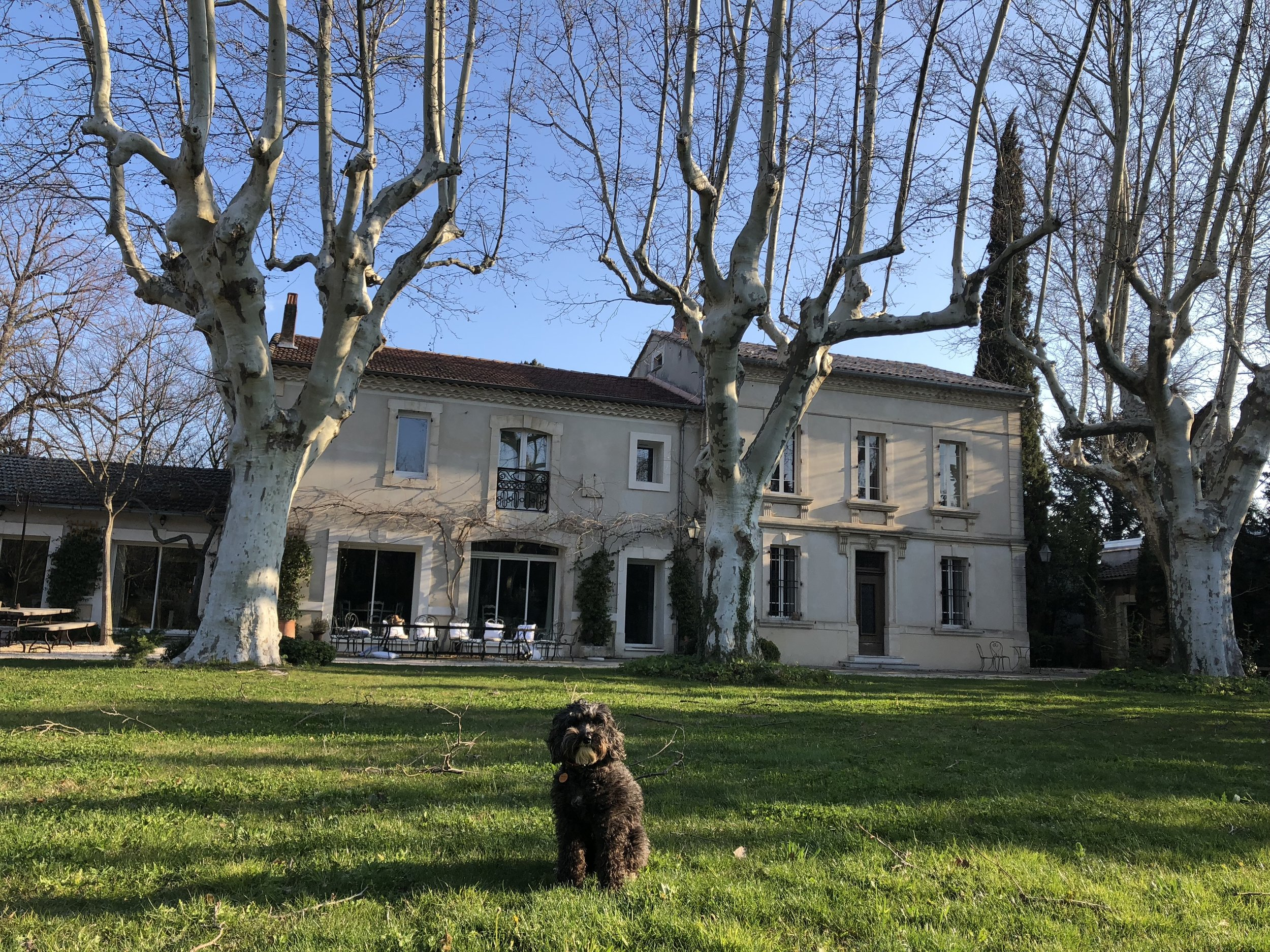 A Week In Provence — Tails Of Wine