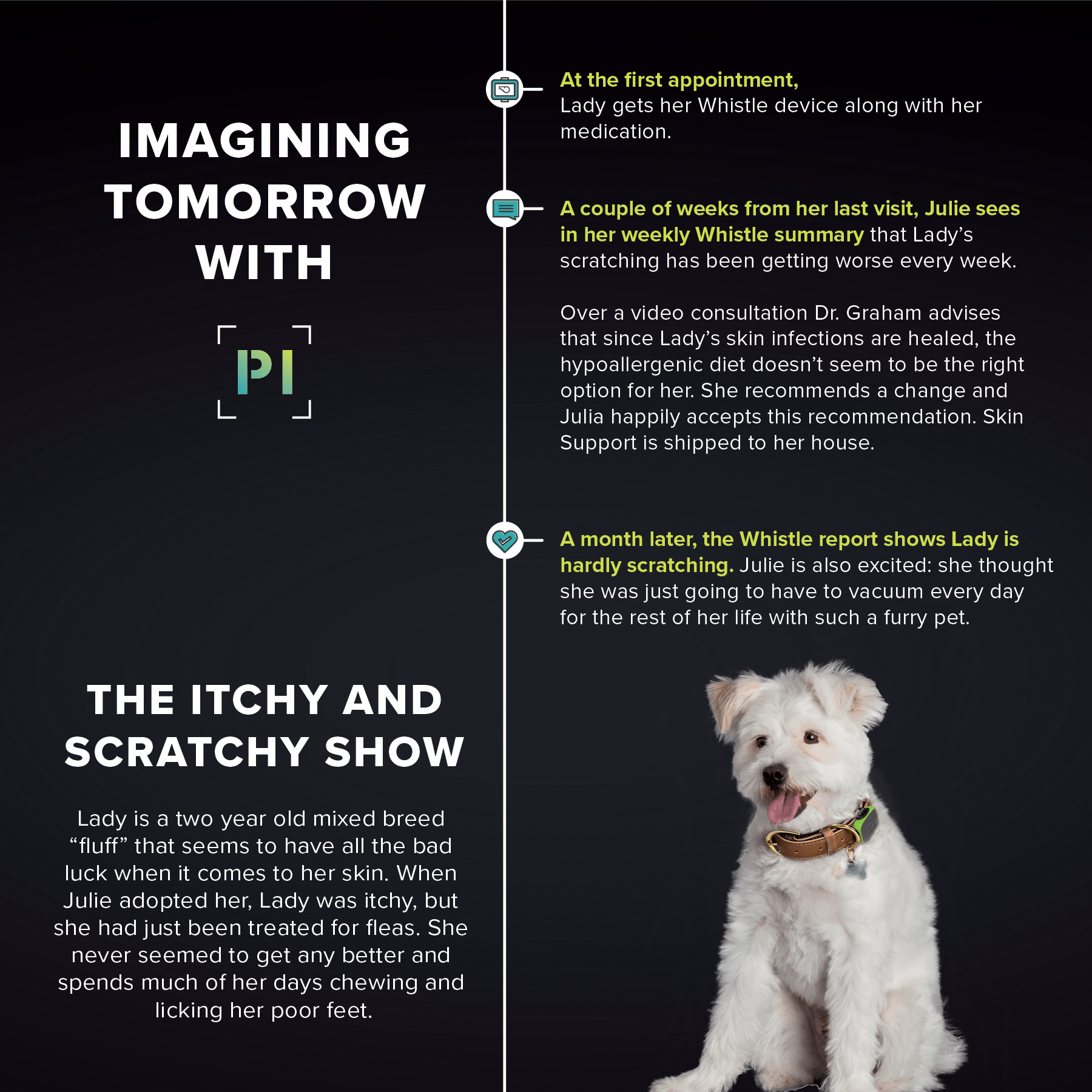 small resolution of step into the petcare time machine destination the future of veterinary care