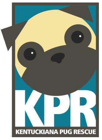 kentuckiana pug rescue