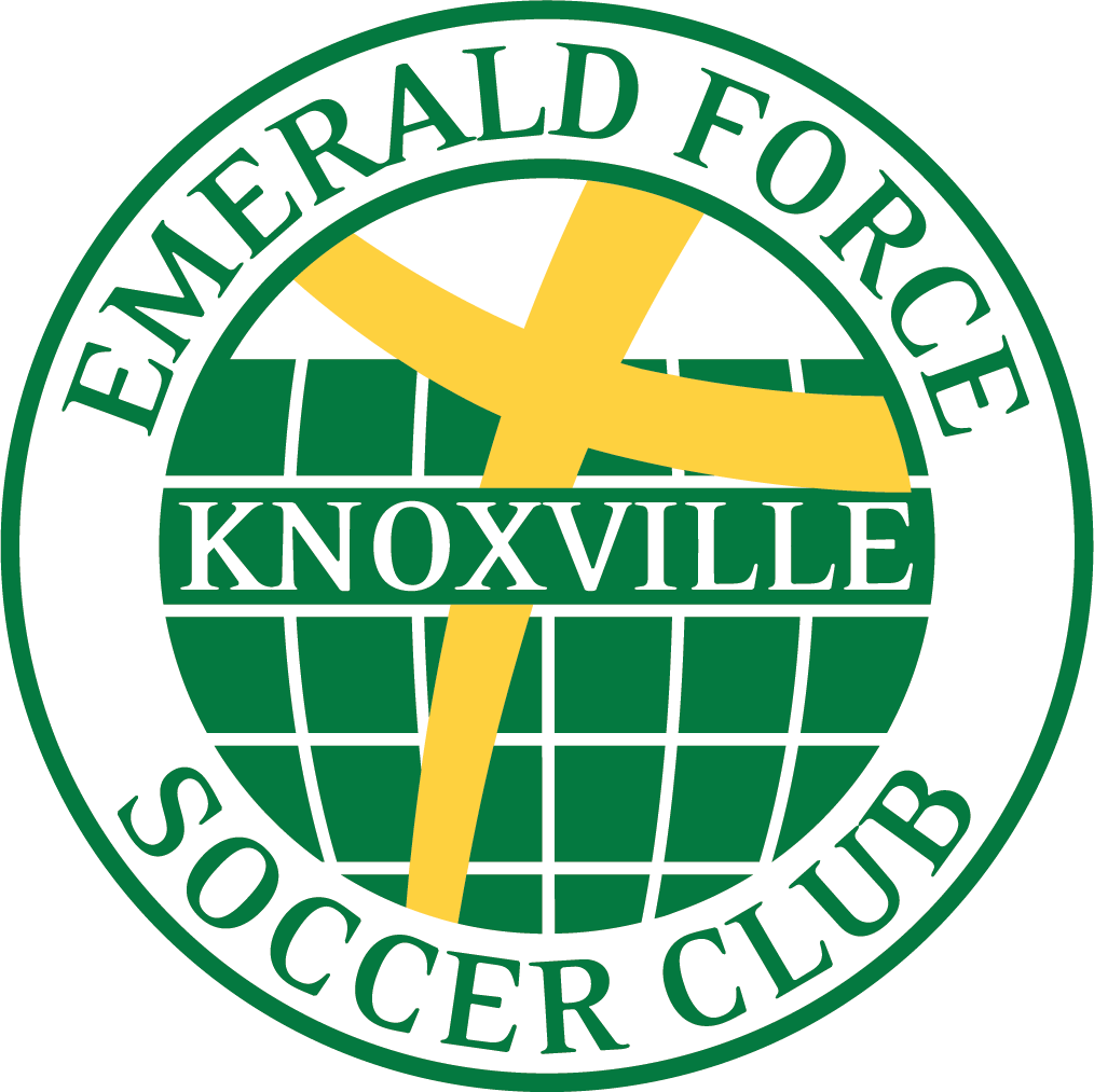 sofaore knoxville tn futon style sofa bed emerald force soccer club