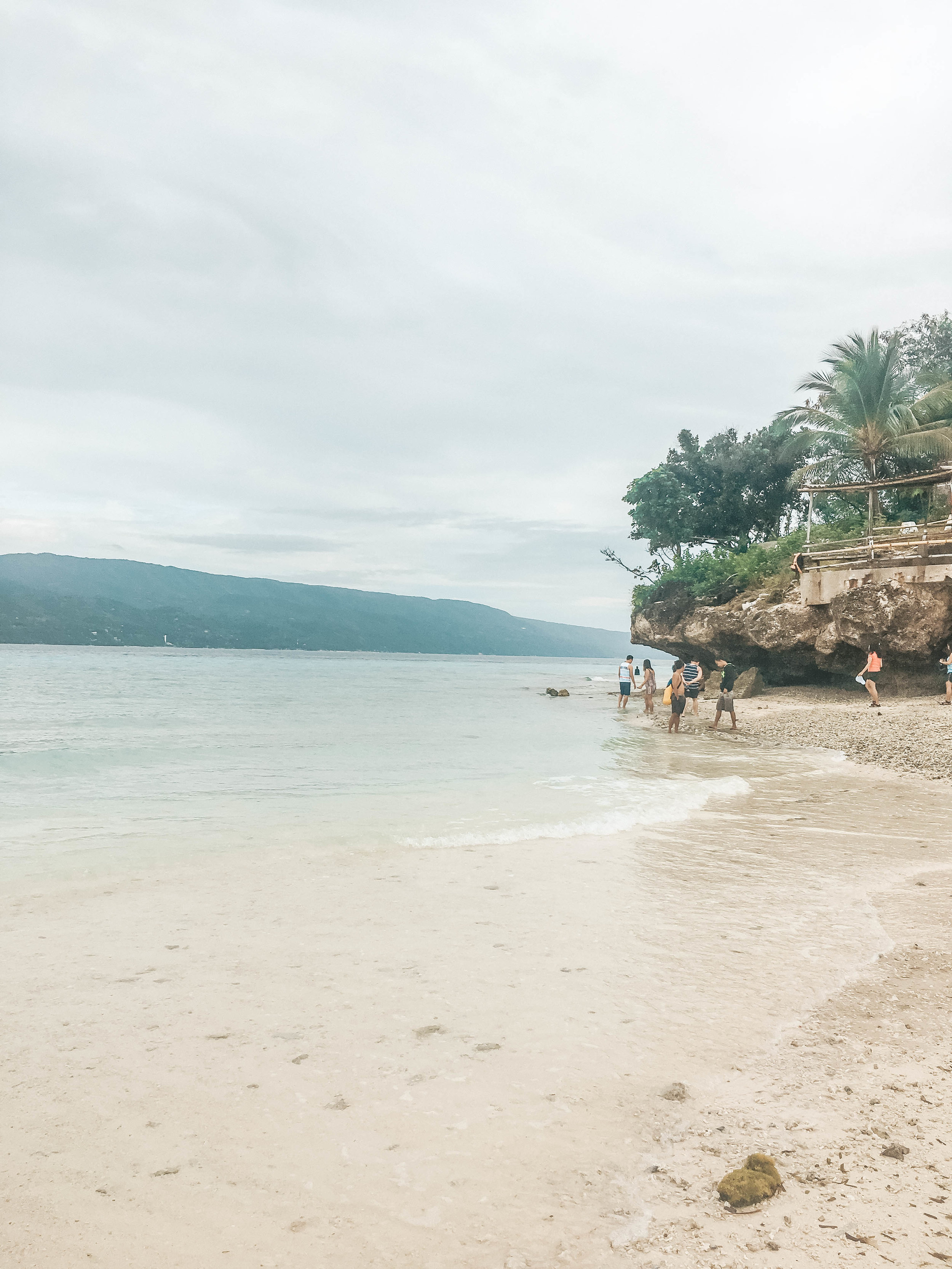 Day Trip in Oslob: Whale Shark Watching and Sumilon Island 5