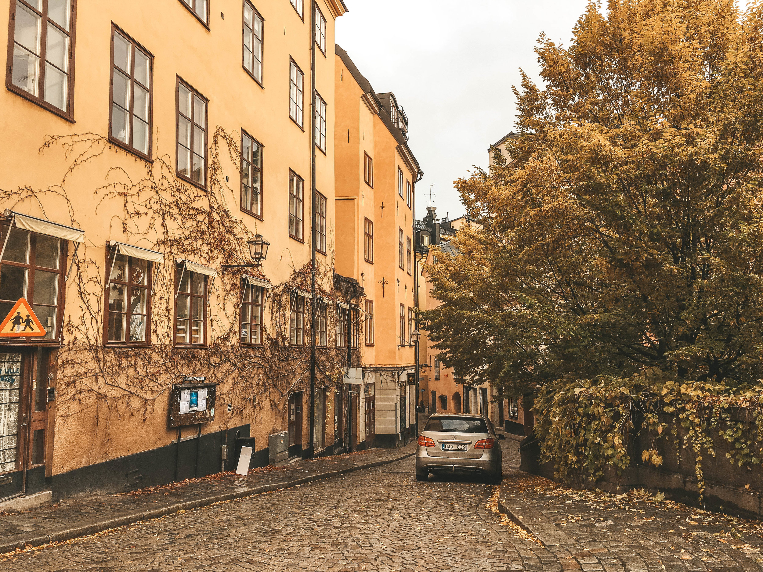 Photo Diary: Autumn in Stockholm, Sweden 17