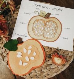 pumpkin invitation [ 1000 x 1176 Pixel ]