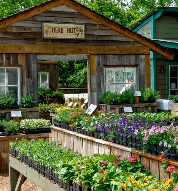 enchanted nurseries & landscapes