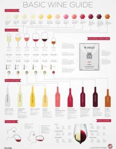 The basic wine guide also  cool infographics rh coolinfographics