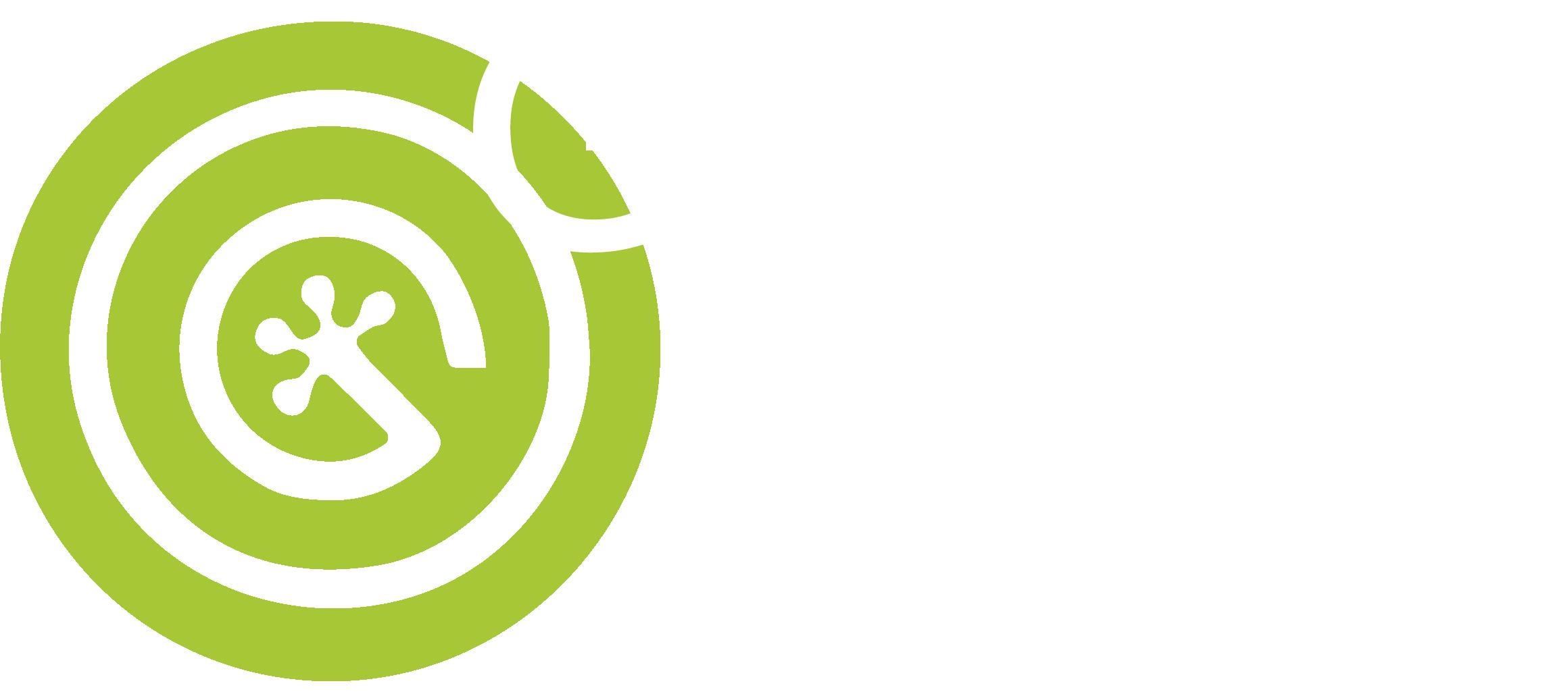 Geco 1