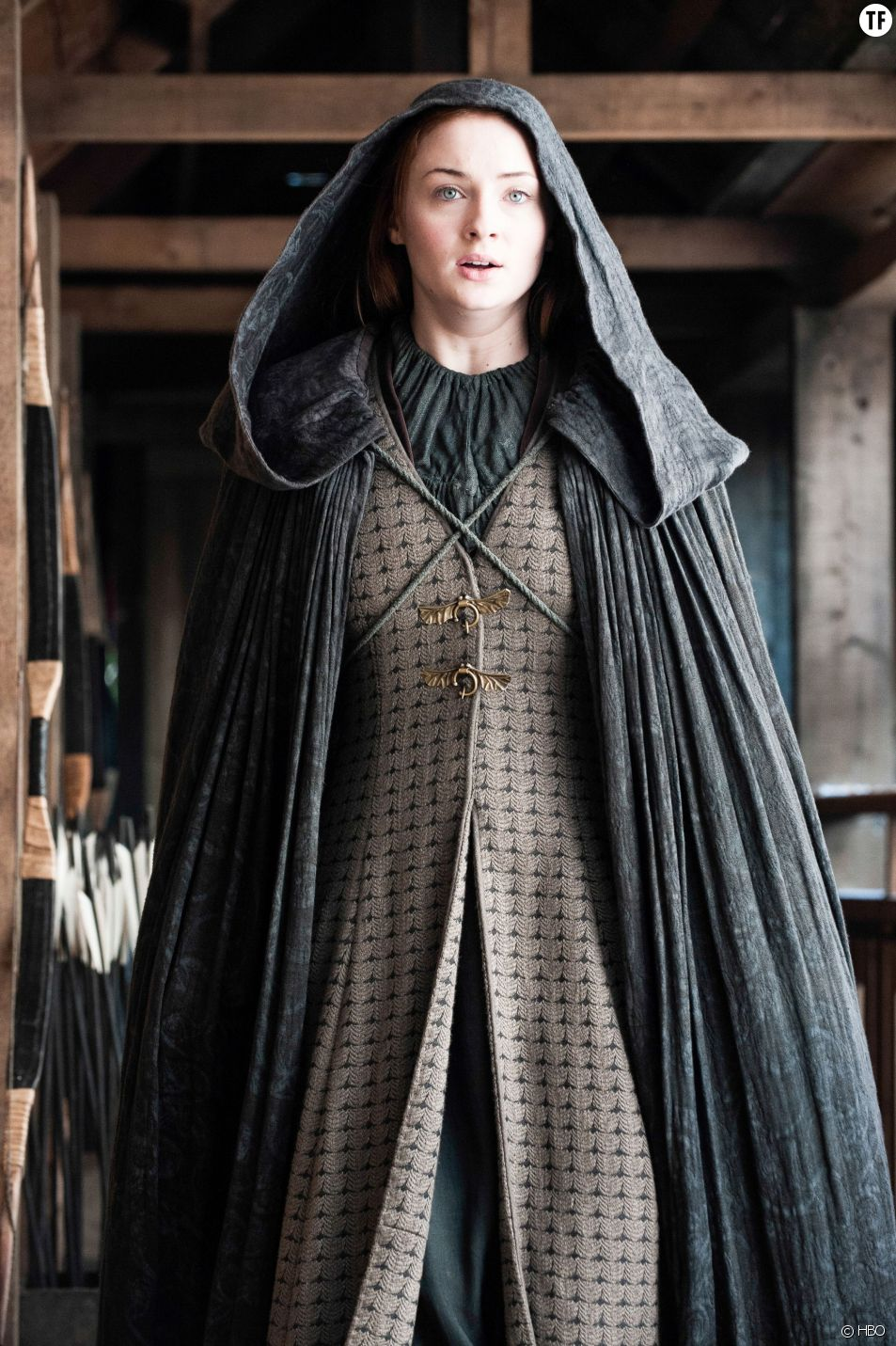 Streaming Grey's Anatomy Saison 15 Episode 9 : streaming, grey's, anatomy, saison, episode, Thrones, L'pisode, (season, Finale)
