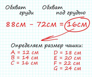 48607804e1136 3 размер чашки бюстгальтера какая буква. Как определить свой размер  бюстгальтера