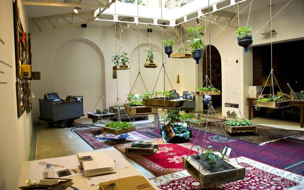 Microgiardini al Cairo  LivingCorriere