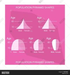 population and demography illustration set of 5 types of population pyramids chart or age structure graph [ 1500 x 1620 Pixel ]