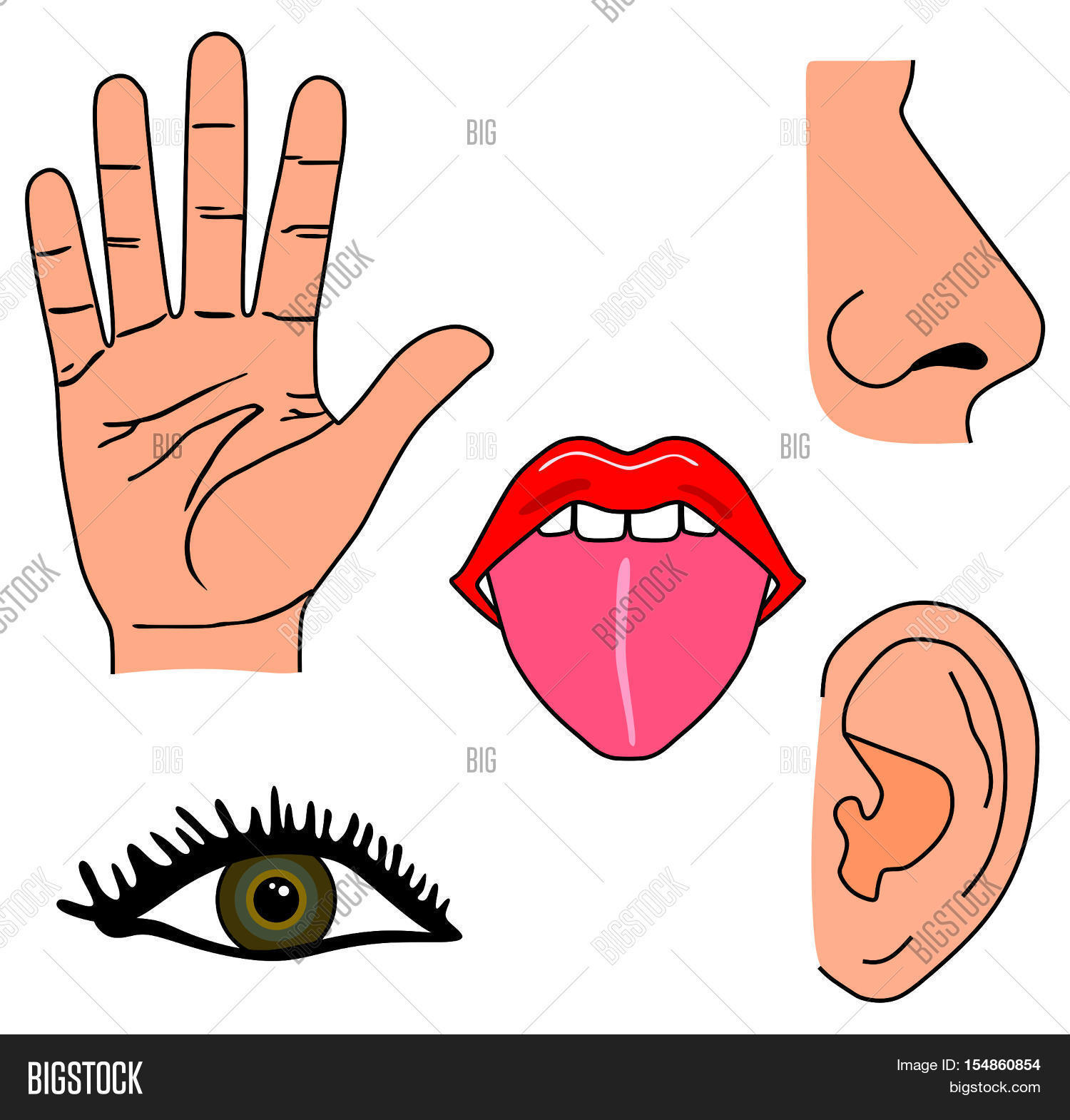 Human Five Senses Set Image Amp Photo Free Trial