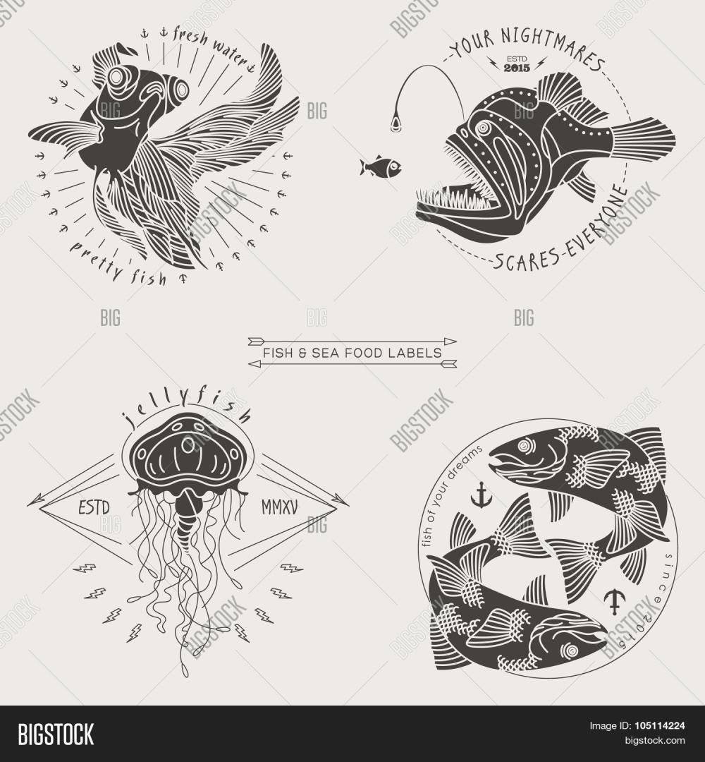 medium resolution of fish labels