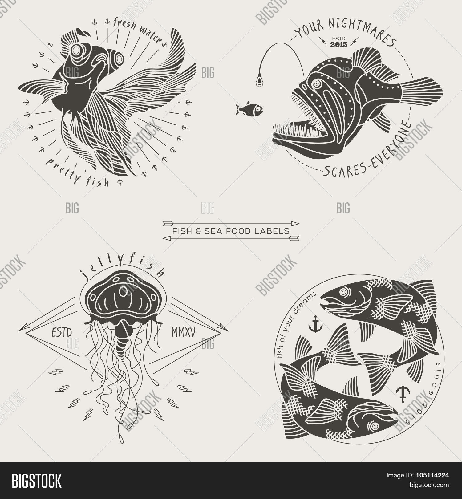 hight resolution of fish labels