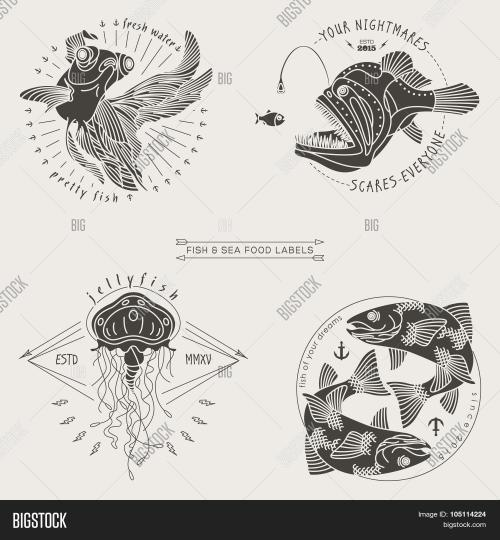 small resolution of fish labels